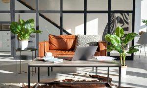 modern-sunny-living-room-interior-design